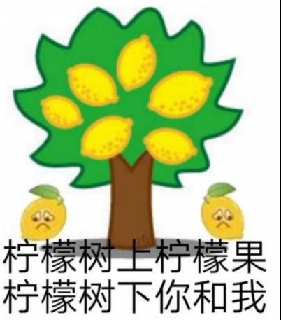 90后95后弄潮最前线,柠檬树到底酸了谁?