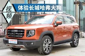 造型威武/空间宽敞 哈弗大狗会是国产SUV的新标杆吗?