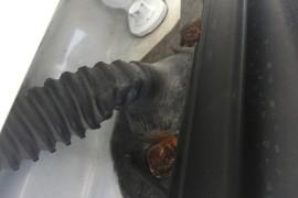 车门螺丝和门缝严重生锈!