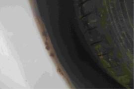 车身到处生锈。